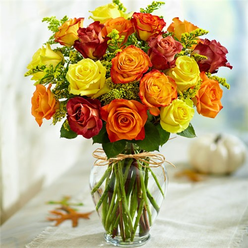 Local florist hot springs ar same day delivery lake hamilton 1 800 flowers rose elegance premium autumn roses mightylinksfo